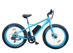 Electric Fat Tire Bike 500w 48v FAT01