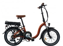 Best 250w Folding Electric Bike, F05