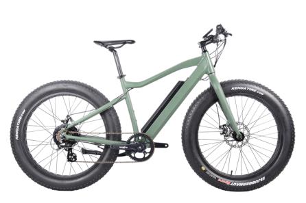 FAT Electric Bike 350W, FAT06