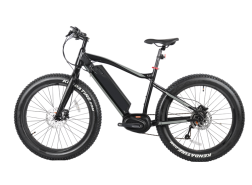 250w/350w Electric Fat Tire Bike, 8FUN MAX centre motor, FAT09