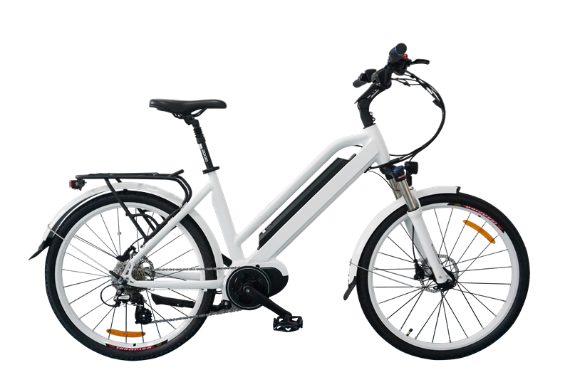 Stylish Electric Bicycle, classic model, C19