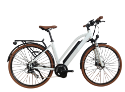 City Electric Bike with 8FUN Centre motor, C01