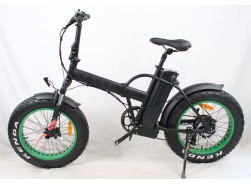 250W Electric Bike with Fat Tire, FAT02