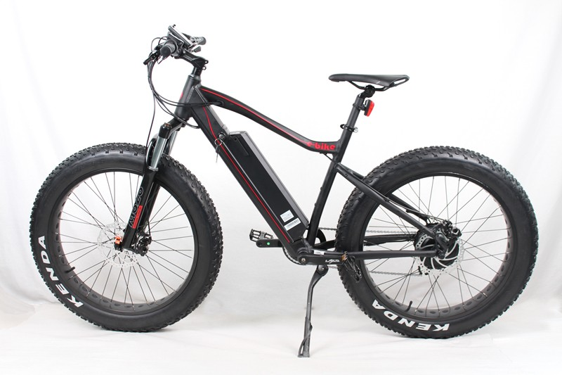 Electric Fat Tire Bike For Sale