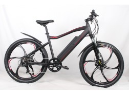 250W/350W/500W Mountain Electric Bike with Magnesium alloy wheel, M01