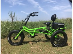 Electric Fat Tire Bike T03