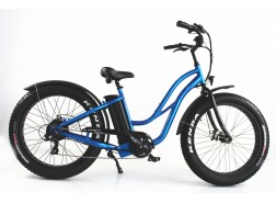Electric Fat Bike for sale, FAT11