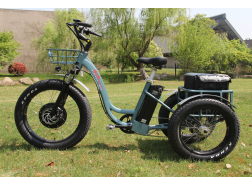 Electric Fat Tire Bike, T02