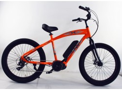 Mid Drive Electric Bike for Sale, M16