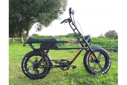 Retro Fat Tire Electric Bike for Commuters, FAT15