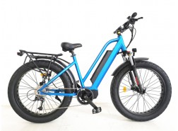 FAT Electric Bike, FAT20
