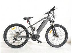 Sport Electric Bike with Full Suspension, M19