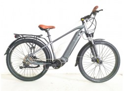Mountain Electric Bicycle, M20