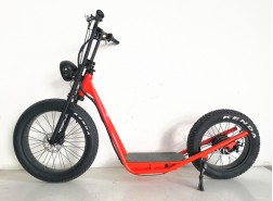 Electric Fat Tire Bike, Electric Scooter, S01