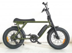 2020 Coolest Electric Fat Tire Bike, FAT22