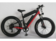 Electric bike: enhance health and fitness