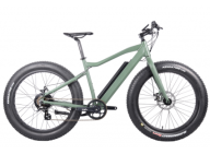 Electric Fat Tire Bike: Eco-friendly & Economical Option