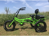 Electric Fat Tire Bike: suitable to ride on unstable terrains