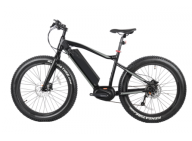 Fitness conscious people prefer electric fat tire bike