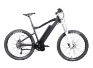 An inquiry of 750w Mountain Electric Bicycle