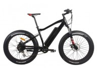 A Quote of Buying Two Electric Fat Tire Bike