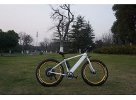 A quote of Fat Electric Bike 500w with hidden battery