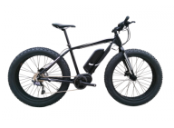 A quote of FAT Electric Bike with 8FUN Centre motor