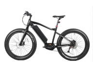 Reasons to Buy Electric Fat tire Bike