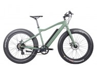 The success of cheap electric fat tire bikes