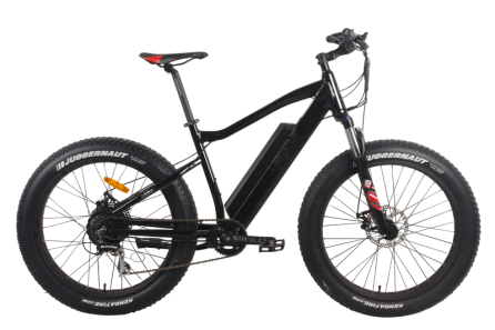 48V 500W Electric Fat Tire Bike