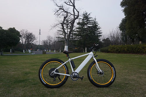 Fat Electric Bike 500w with hidden battery, FAT03